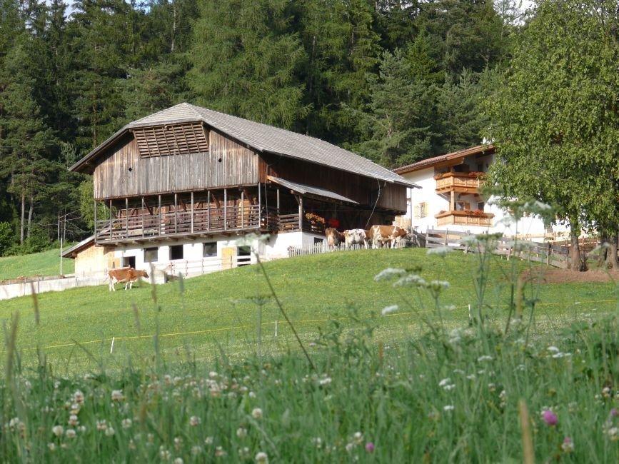 Authentisch und ganz nah dran – Ferien auf dem Bremichhof